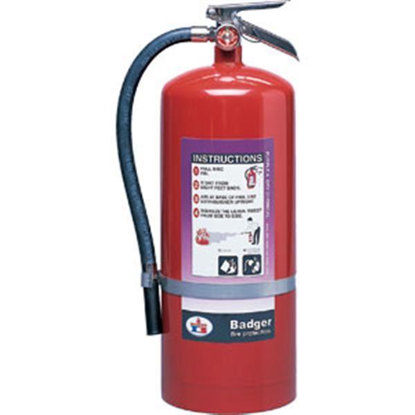 "Badgerâ""¢ Extra 20 lb Purple K Fire Extinguisher w/ Wall Hook"