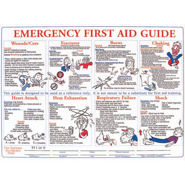 Brady® First Aid Training Safety Poster